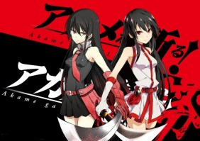 Akame_ga_KILL____553aa44ec4feb.jpg