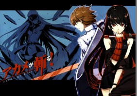 Akame_ga_KILL____57ce3cd82b2e4.jpg