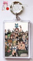 Fairy Tail 18