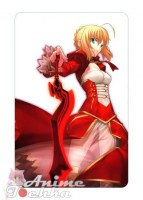 Fate Extra 10